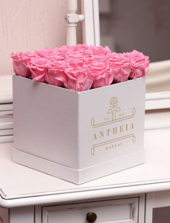 Antheia Rose Flower